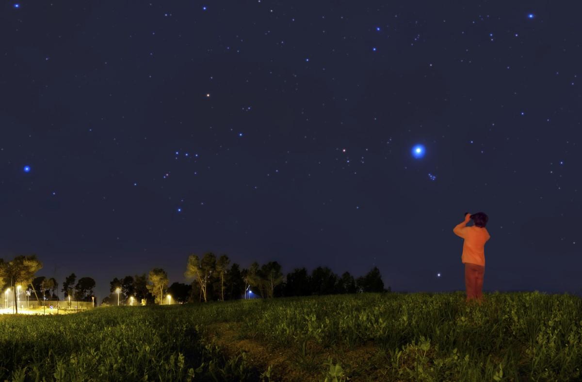 lights in the night sky essay